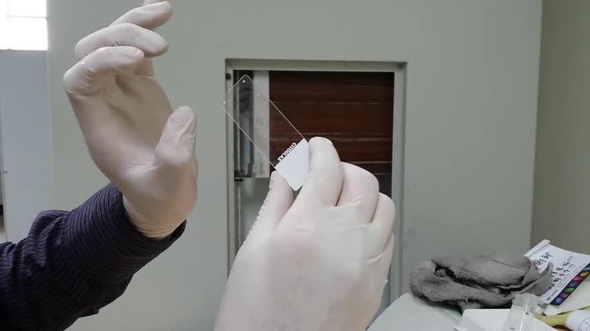 laica冰冻切片切脊髓的操作步骤