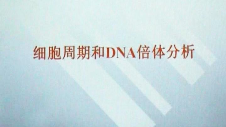 细胞周期和DNA倍体分析