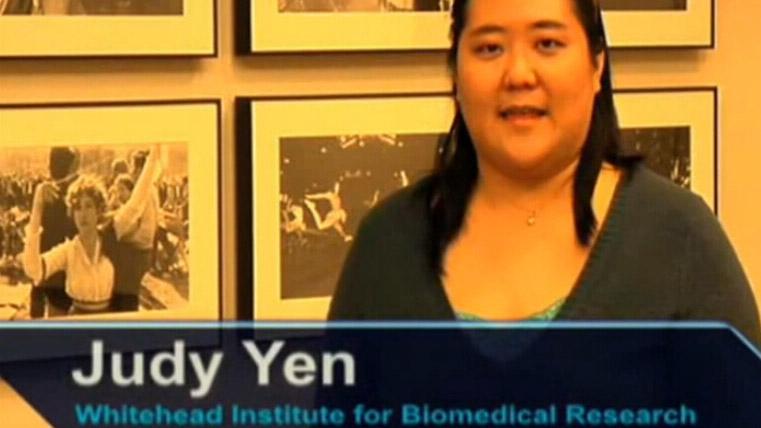疫苗病毒感染和病毒基因表达的暂时分析视频
