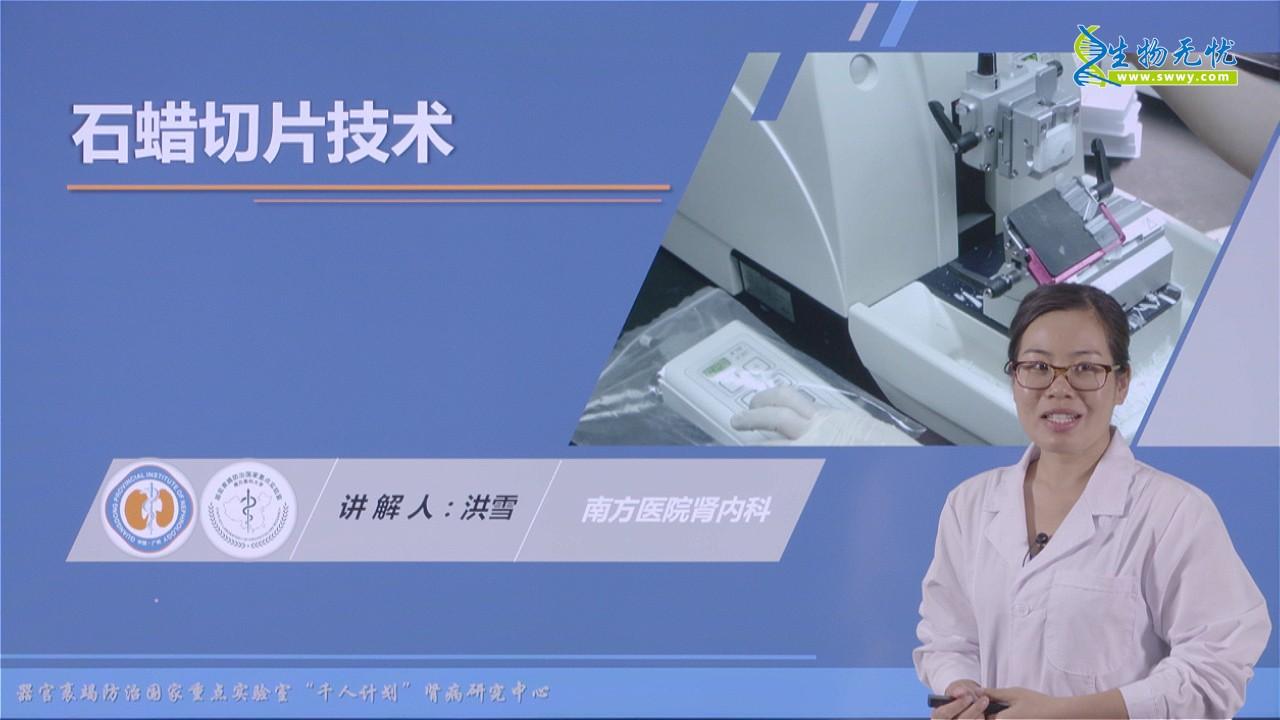 洪雪:石蜡切片技术