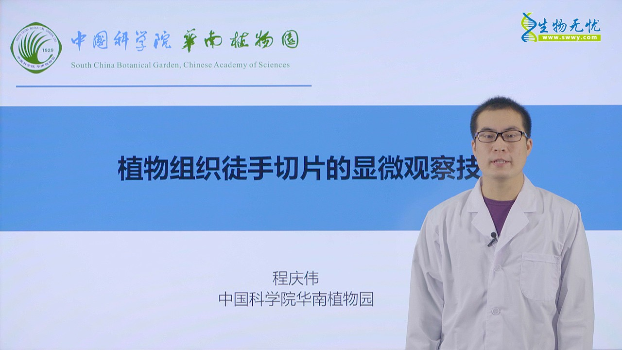 程庆伟:植物组织徒手切片的观察技术