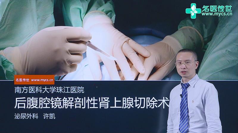 许凯:后腹腔镜解剖性肾上腺切除术(第2P-总2P)