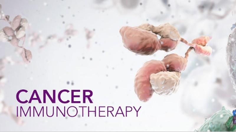 关注肿瘤治疗中免疫问题(第2P-总2P)