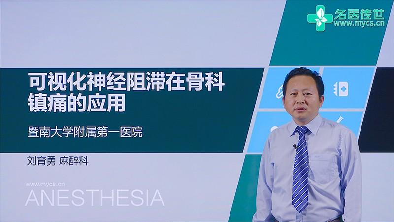 刘育勇:可视化神经阻滞在骨科镇痛的应用(第1P-总2P)