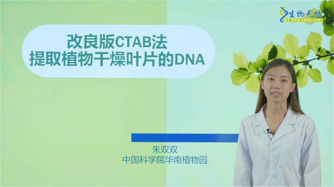 朱双双:改良版CTAB法提取植物干燥叶片的DNA