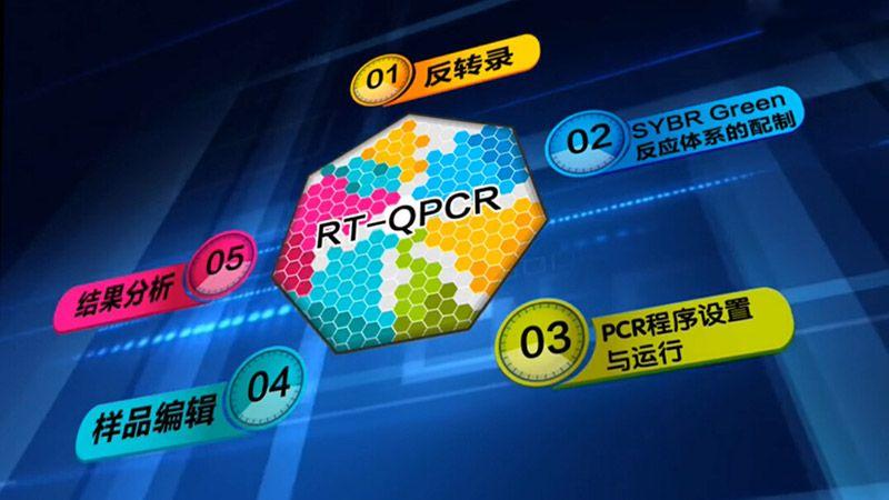 实时荧光定量PCR视频
