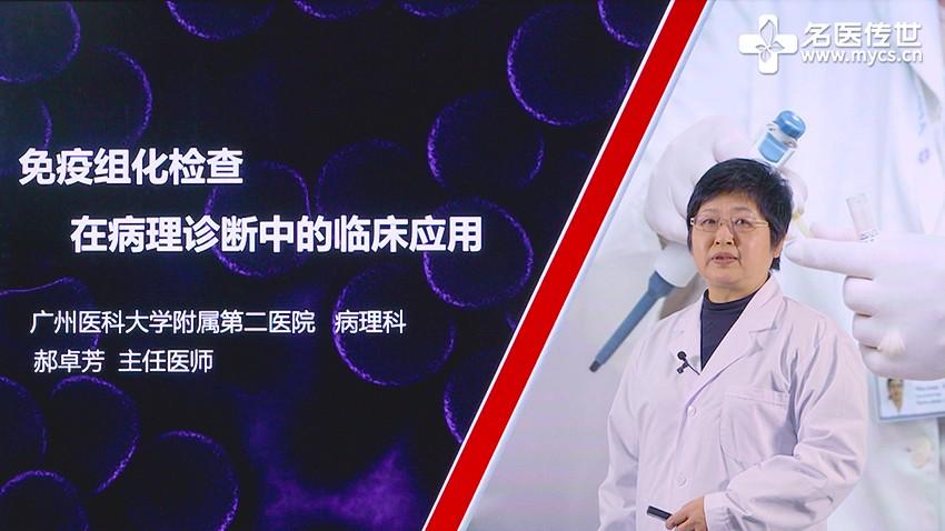 郝卓芳:免疫组化检查在病理诊断中的临床应用(第1P-总2P)