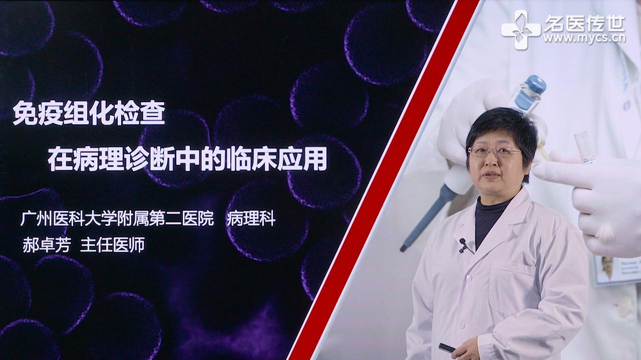 郝卓芳:免疫组化检查在病理诊断中的临床应用(第2P-总2P)