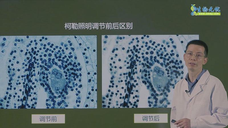 生物光学显微镜使用及维护-第二部分