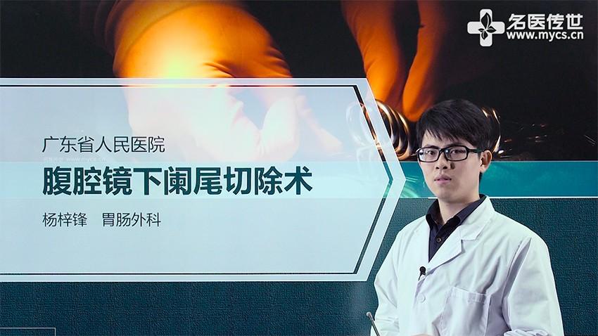 杨梓锋:腹腔镜下阑尾切除术(第1P-总2P)