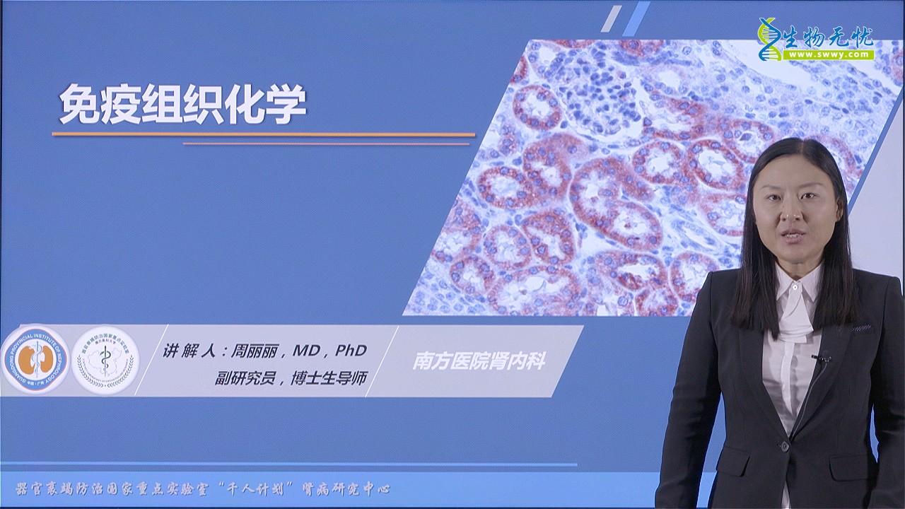 周丽丽:免疫组织化学