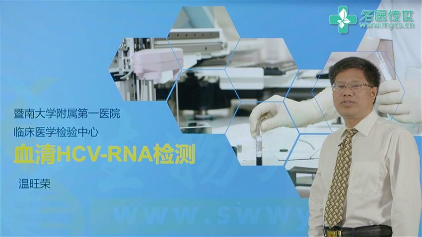 温旺荣:血清HCV-RNA检测(第1P-总2P)