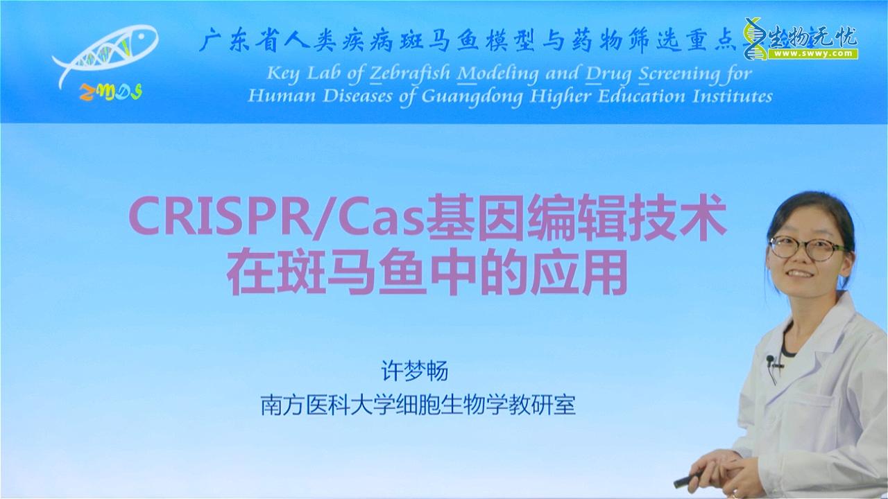 许梦畅:CRISPR/Cas基因编辑技术在斑马鱼中的应用