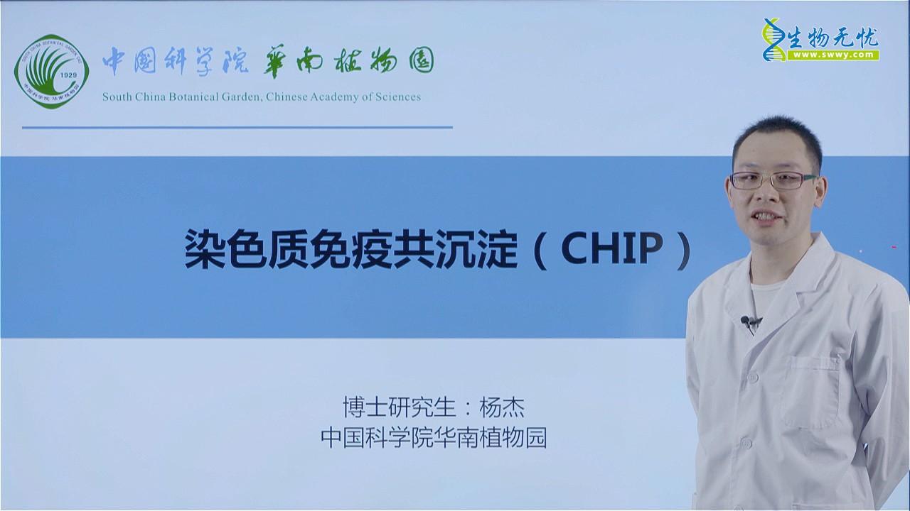 杨杰:染色质免疫共沉淀(CHIP)