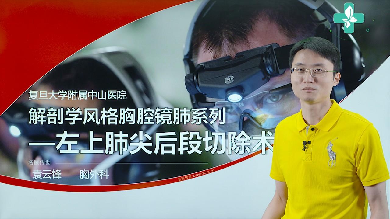 袁云锋:解剖学风格胸腔镜肺系列—左上肺尖后段切除术讲解