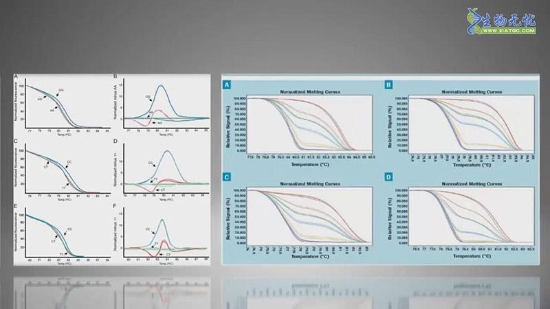 高分辨熔解曲线(HRM)视频