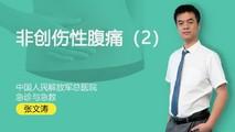 张文涛:非创伤性腹痛(2)