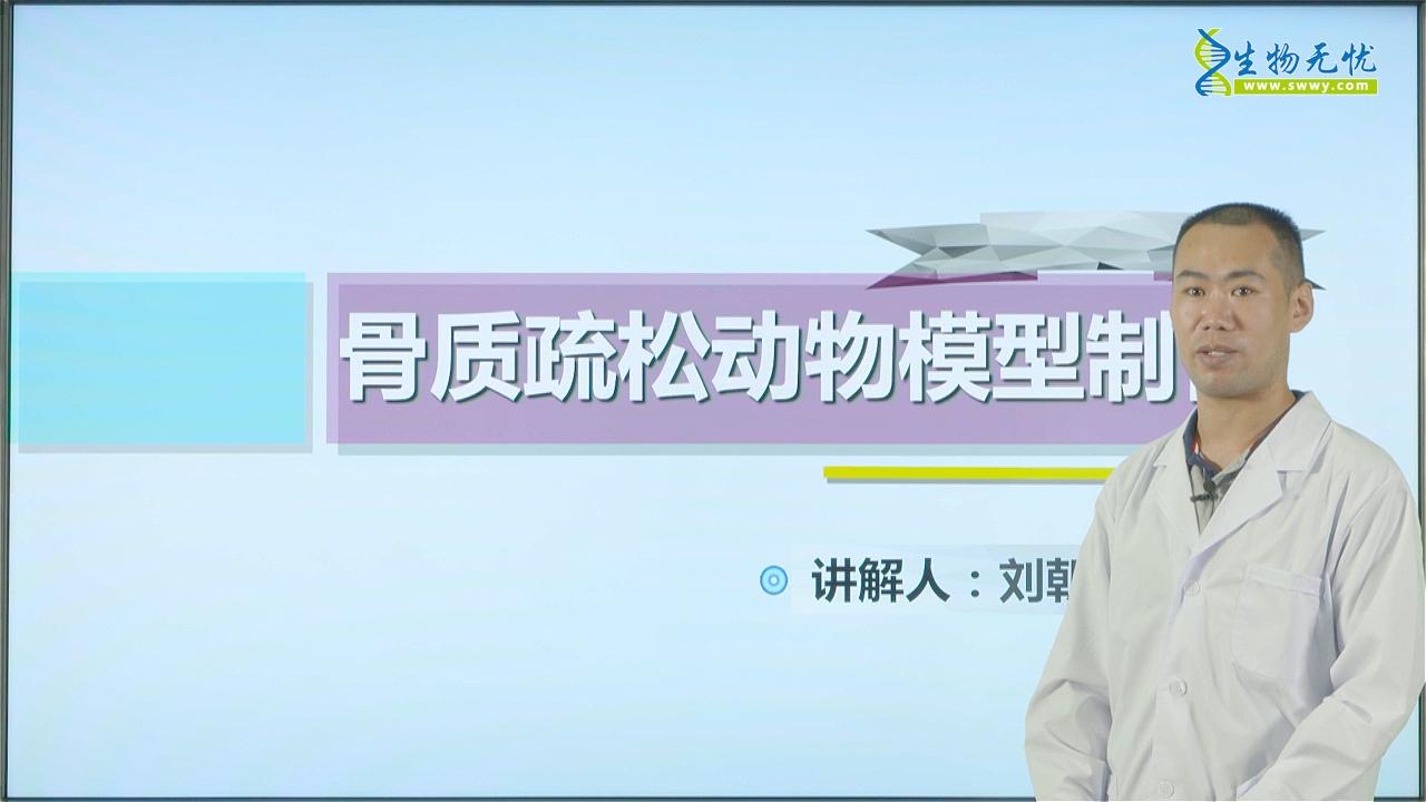 刘朝明:骨质疏松动物模型制备